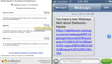 An example of a text message you might receive as a Websays alert